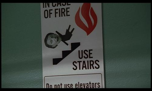 livia stair sign2