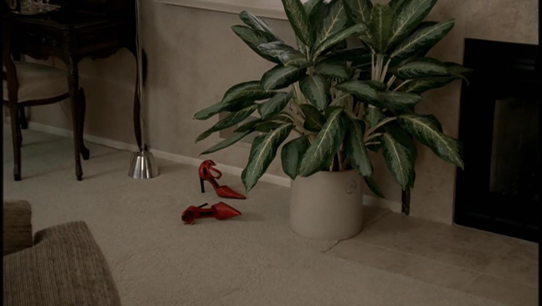 irina's shoes